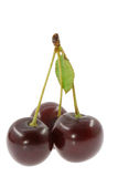 Cherry. Three cherry isolated on white background Royalty Free Stock Photography