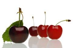 Cherry. On white Royalty Free Stock Photo