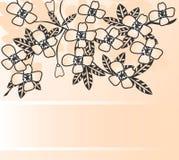 Cherry royaltyfri illustrationer