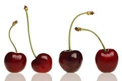 Cherry. Cherries on white Stock Photography