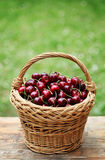 Cherry. Some beautiful sweet cherry fruit in a basket Stock Photography