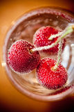 Cherry in air bubbles. Stock Image