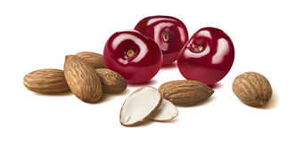 Cherry almond composition horizontal long isolated on white back Stock Photos