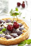Cherry and Almond Tart stock images