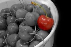 Cherry Anyone ? photographie stock