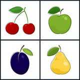 Cherry, Apple, Plum, Pear Royalty Free Stock Photography