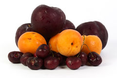 Cherry apricot prune Stock Photography