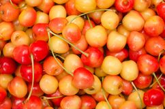 Cherry as background Stock Image