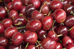 Cherry background. Background of lots of dark red ripe cherries Stock Image
