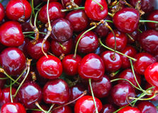 Cherry background Royalty Free Stock Image