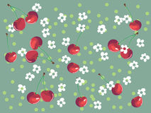 Cherry background. Cherries and flowers on spotted background Stock Images