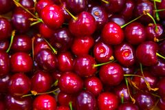 Cherry background closeup Royalty Free Stock Photo