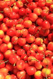 Cherry Background Royalty Free Stock Photos