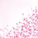cherry background. Royalty Free Stock Image