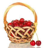 Cherry in basket Royalty Free Stock Image