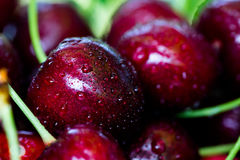 Cherry basket. cherry tree branch. fresh ripe cherries. sweet ch Royalty Free Stock Photography
