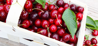 Cherry basket Stock Photography