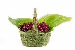 Cherry basket Royalty Free Stock Photos