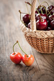 Cherry in the basket Royalty Free Stock Image