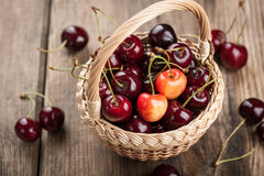 Cherry in the basket Stock Image