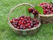 Cherry baskets Royalty Free Stock Photos