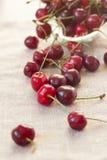 Cherry Berries Foto de archivo libre de regalías