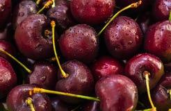 Cherry Berries Photo libre de droits