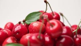 Cherry berries stock video