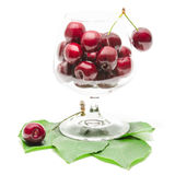 Cherry berries fruits in clear wineglass on green fresh leaves Royalty Free Stock Photography