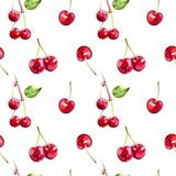 Cherry berries hand draw seamless watercolor fabric pattern. Cherry berries seamless pattern. Cherry hand draw watercolor illustration. Isolated on white royalty free illustration