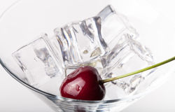 Cherry berries in a martini glass on white background Stock Photography