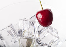 Cherry berries in a martini glass on white background Stock Images