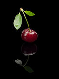 Cherry berry on a green small stalk. Royalty Free Stock Photography