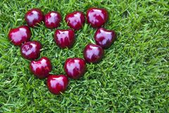 Cherry berry heart symbol grass background nobody. Day light royalty free stock image