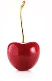 Cherry Berry isolerade på vit bakgrund arkivbilder