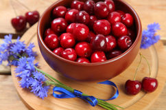 Cherry berry Royalty Free Stock Image