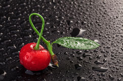 Cherry on a black background Royalty Free Stock Images