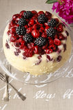 Cherry and blackberry cheesecake Royalty Free Stock Images
