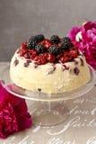 Cherry and blackberry cheesecake Stock Photos