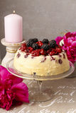 Cherry and blackberry cheesecake Royalty Free Stock Photo