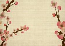 Cherry blossom. Illustration of cherry blossom flowers on retro paper Royalty Free Stock Photo