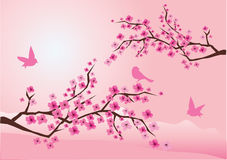 Cherry blossom. With birds and mountains at the background vector illustration