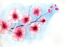 Cherry Blossom stock abbildung