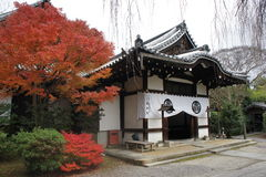 Cherry Blossom außerhalb des Tempels Stockbild