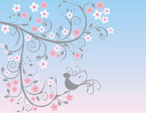 Cherry blossom background Royalty Free Stock Photos