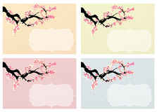 Cherry blossom background. Cards set royalty free illustration