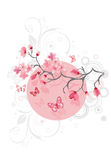 Cherry blossom background Royalty Free Stock Image