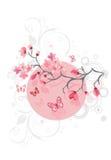 Cherry blossom background royalty free illustration