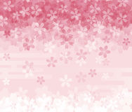 Cherry blossom background image Royalty Free Stock Photography