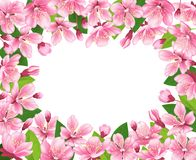 Cherry blossom background. Pink spring flowers frame. Cartoon style vector illustration. Cherry blossom background. Pink spring flowers frame. Wedding, spring stock illustration